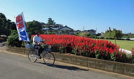 2014_09_28_自転車こぎ