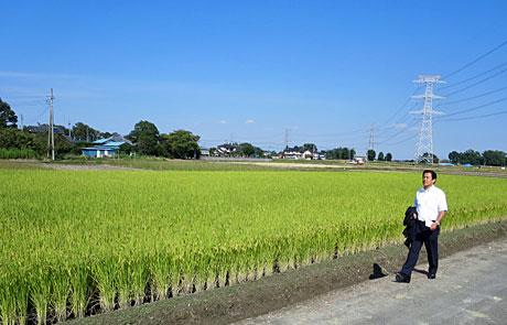 2014_09_23_稲穂