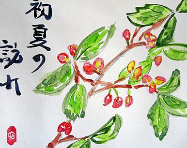 2015_05_04_絵手紙・さくらん
