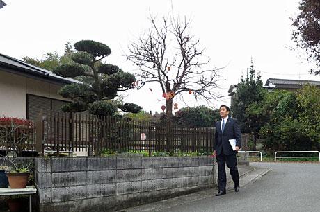 2015_11_22_個別